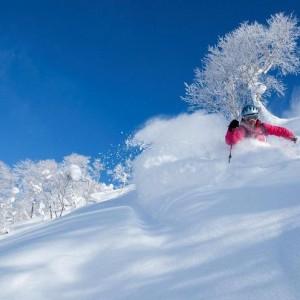 北海道のスキーシーズン