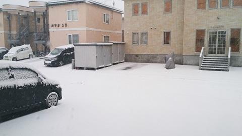 一気に冬です!