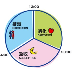 『STUDYING』睡眠の質を高める行動
