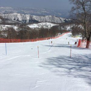 野沢FIS SL1戦目